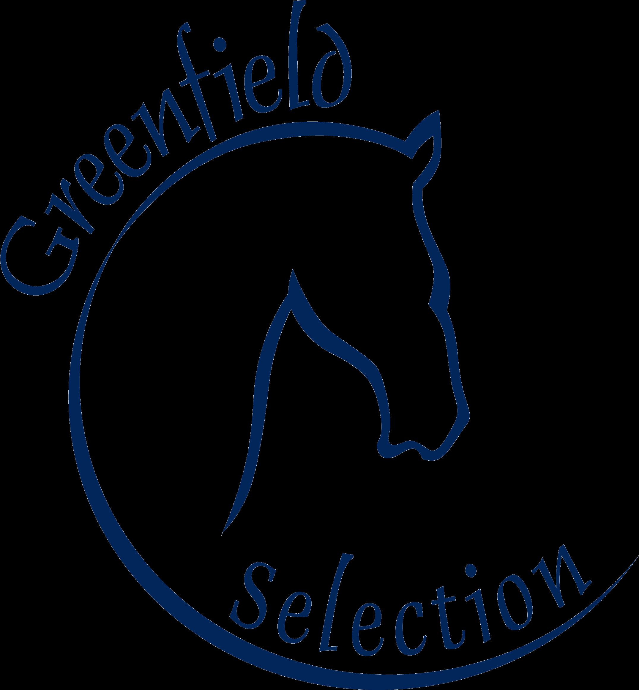 GS Logo transparent